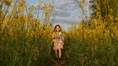 cabelos claros : Little girl and boy in a field at sunset. Slow mo Stock Footage