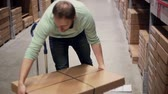 empurrando : A man in a blue sweater is taking boxes from the shelf, putting them on the trolley in a storage warehouse