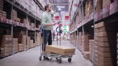 empurrando : A man pushing a trolley in a warehouse. He is checking his list and taking necessary boxes Stock Footage