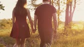 sunset : Beautiful sunset in nature. Lovers walk in forest, hold hands woman touches leaves. Slow mo, steadicam shot, backview Stock Footage