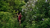 arbusto : Young couple walk in forest through the lilac bushes. Lovers in nature. Slow mo, steadicam shot, backview Stock Footage