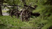 curiosidade : A close up of an old rustic wooden wagon that is standing in the forest covered with grey moss