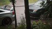 flaş : Rain on cars and ground with sound. Thunder and lightning. Another car passes by.