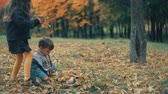 brasão : cute little brother and sister playing in the autumn park, girl throws on boy yellow fallen leaves 4k