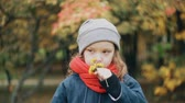Уайлдфлауэр : funny little girl holding a small bouquet and enjoy the scent of wildflowers in the amazing autumn park slow motion