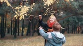 ok : funny little girl shakes branch of tree and yellow autumn leaves fall from it her younger brother tries to make how she Stok Video