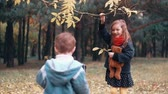 crumble : funny little girl shakes branch of tree and yellow autumn leaves fall from it her younger brother tries to make how she Stock Footage