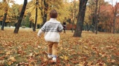 atender : happy cute little boy runs to his mother through the amazing autumn alley in the park slow motion