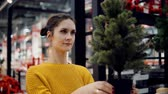 получать : Young attractive brunette girl at the store chooses an artificial Christmas tree, Christmas decoration.