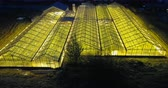 экологический : Aerial view of lots of greenhouse outside the city shining in dark night. Copter flying over the organic farm. Стоковые видеозаписи