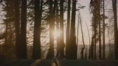 雄大な : Amazing side view backlight shot of tourist girl walking along beautiful forest road at sunset Yosemite park slow motion