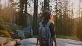 雄大な : Camera follows beautiful peaceful tourist girl hiking in deep woods at amazing creek on sunset Yosemite park slow motion