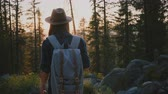 雄大な : Camera follows peaceful tourist girl hiking in deep woods, watching incredible sunset at Yosemite park woods slow motion