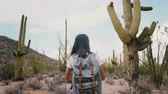 南西 : Slow motion young happy tourist woman with backpack taking smartphone photo of giant Saguaro cactus at a national park.