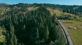 drone flies over a pine forest along a country road on the background green dense pinewood Stok Video