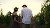 wijnranken : Young happy loving couple walking outdoors in the vineyard talking with each other Stockvideo