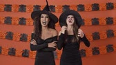 frightening : Pretty evil young witch women in black halloween costumes laughing together and gesturing with hands over orange pumpkin wall