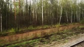 atravessar : Woodland video from the window of a moving train. Travel concept.