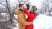 sixteen : Couple in love. Teenagers on a date in the winter. Girlfriend straightens his hat to her boyfriend and kisses him. Stock Footage
