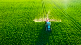 масличные культуры : Aerial view of farming tractor plowing and spraying on field