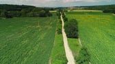 vinná réva : Vineyards and agricultural fields in the countryside, beautiful aerial video Dostupné videozáznamy