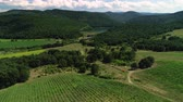 谷 : Vineyard rows and agricultural fields in beautiful valley in Bulgaria, Europe
