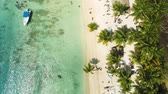 hajópapírok : Aerial view of tropical beach with coconut palm trees and beautiful coastline