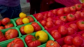 grocer : Fresh produce being sold on the farmer s market, colorful tomatoes, wild mushrooms, different lettuces (package of 3 scenes panning right) Stock Footage