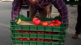grocer : Fresh farmers market is prepared, displayed, arranged and shown in the morning (package of 6 panning scenes) Stock Footage