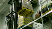spedycja : Lift in the kitchen (Package of 2 scenes, fixed angle of the lift picking the pallet, traveling down with the lift)