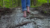 Mans feet walking on a path in a forest (Package of 3 scenes, traveling forward, panning left and right) Stock Footage