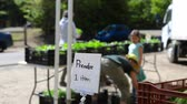 Blurry people are seen at a local farmers market behind a sign saying pick one item, as farmer gives surplus produce to the local community, with copy-space. Стоковые видеозаписи
