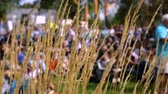 gösterici : Colors and action from low angle of environmental demonstration revealed behind long grass blowing gently in the wind with selective focus