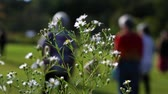 sportos : Spring wildflowers reveal a group of senior women exercising in a park with selective focus in beautiful sunny light