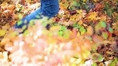 Feet Man walking on fall leaves Outdoor with Autumn season nature on background. Lifestyle Fashion trendy style 무비클립