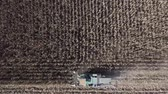 Combine harvesting seed from fields, aerial view of a field with a combine harvester with cornhusker gathering the crop. Agriculture and cultivation, cuttings, corn threshing, fields in the countryside Stock Footage