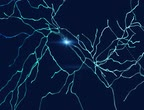Neurons, synapses, neural network of neurons, brain, degenerative diseases, Parkinson, 3d rendering Stock Footage