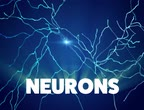 Neurons, synapses, neural network of neurons, brain, degenerative diseases, Parkinson, 3d render Stock Footage