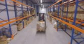 distribuidor : Man driving forklift truck in warehouse Vídeos