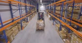 отправка : Man driving forklift truck in warehouse Стоковые видеозаписи