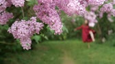 loose : Slim girl out of focus dancing in a loose dress among the bushes of lilac