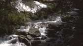 Rough waterfall running among boulders in the Carpathian Mountains in slo-mo