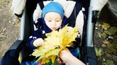 Litle boy in stroller play with yellow leafs in slow motion - pov view. Videos