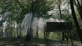 Amazing slow motion in the forest - smoke from bbq and daylight.