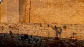 palafitte : Male shadow dancing on stilts at an old fortress in summer in slow motion