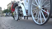 koets : Historic white carriage with horses going on cobblestoned street in Krakow in slo-mo