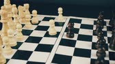 rycerz : white and black chess Wideo
