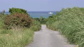 subtropics : Road through grass field toward fishing boat on sea in Ishigaki island