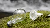 Incandescent light bulb and LED light bulb on a green moss in front of brook Vídeos