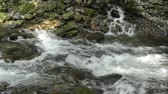 Tributary flowing through among stones into fast flowing brook in Kagoshima Стоковые видеозаписи